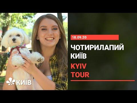 Dogs friendly Kyiv : куди піти з собакою в столиці