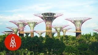 Gambar cover Visit Singapore's Stunning Grove of Man-Made Trees