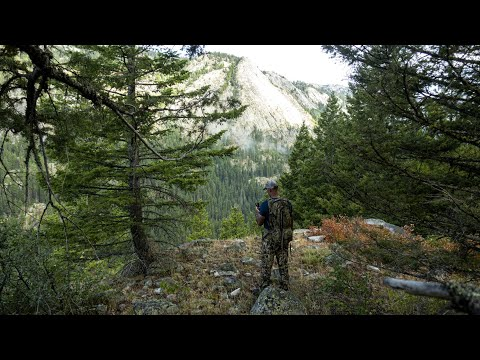 How To Find The Best Elk Hunting Areas
