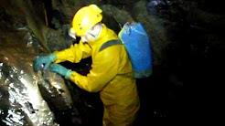 Caving: Dan Yr Ogof
