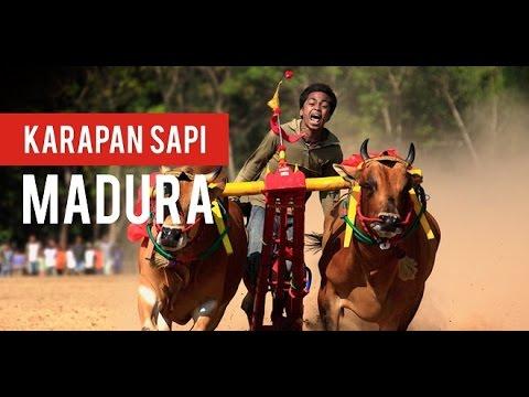 Lir Sa'alir [Versi Original] - Lagu Daerah Madura - Indonesia