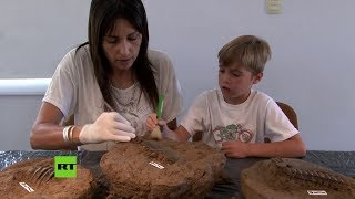 Un niño descubre fósiles de un animal prehistórico en una playa argentina