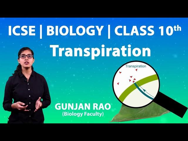 ICSE | Class 10th | Biology | Transpiration | Imp Ques | What is Translocation & Transpiring Organ ?
