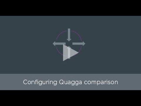 NCLU vs flat file editing: Configuring Quagga