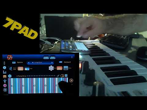 7pad looper live demo