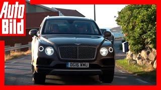Video: Bentley Bentayga - Tour Etappe 5 - Videotagebuch / Test / Drive / Sommer / Norwegen/review