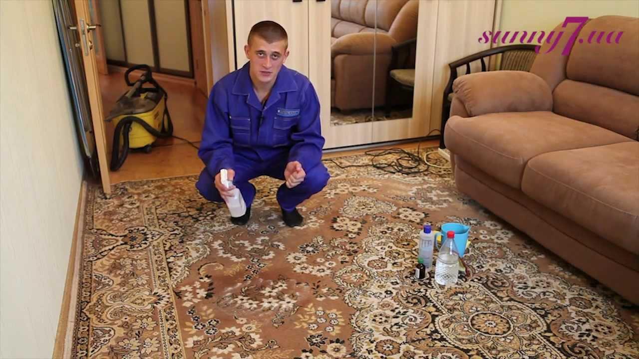 Чем почистить палас в домашних условиях ванишем