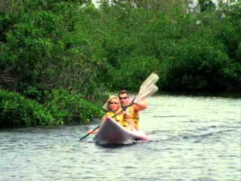Cayman Islands - Caribbean travel destination video