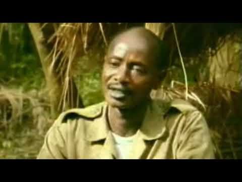 Luwero Triangle guerrilla war (1981-1986) that propelled Yoweri Kaguta Museveni to the presidency.