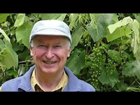 Colin Austin on Wicking Beds and Healthy Food