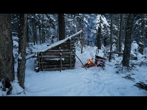 Sub-Zero 3 Day Solo Bushcraft Camp in the Wilderness During a Winter Storm, ASMR