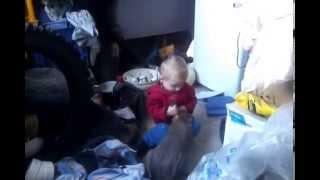 Малыш таскает кролика за уши и ...