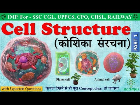 Cell structure and Function in hindi। कोशिका  संरचना। Biology for SSC CGL, CHSL, class 8,9,10_mp4