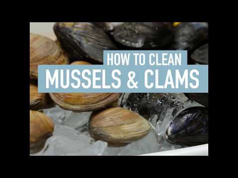 How To Clean Mussels & Clams | How To | Safeway