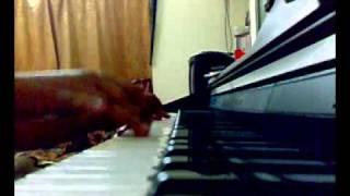 Chol rastay(Piano cover) By Swagato.mp4