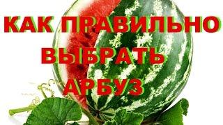 КАК ПРАВИЛЬНО ВЫБРАТЬ АРБУЗ(КАК ПРАВИЛЬНО ВЫБРАТЬ АРБУЗ РЕКЛАМА НА КАНАЛЕ- https://vk.com/psovety ПОДДЕРЖАТЬ РАЗВИТИЕ КАНАЛА- http://www.donationalerts.ru/r/pol..., 2016-08-10T20:44:33.000Z)