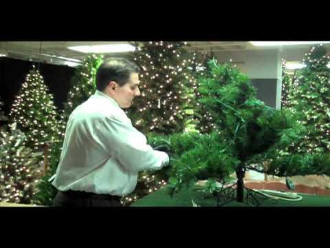 Sheridan Nurseries Video - Shaping your Christmas tree - Sheridan Nurseries Video - Shaping Your Christmas Tree - YouTube