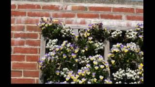 Vertical Gardening Ideas | Vertical Gardening | Diy Vertical Gardening | Ideas | How To
