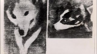 5 First Ever Photos Taken in Space - Space Documentary