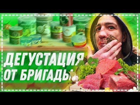 ДЕГУСТАЦИЯ ВСЕЙ БРИГАДОЙ ТУШЁНКА С КОРОЛЕВСТВА / ЁЛЫ - ПАЛЫ ПОКАЗАЛ КУХНЮ