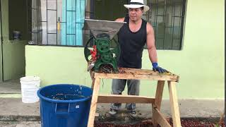 7 Seconds of Depulping Coffee with a Hand-crank Machine in Buesaco Town