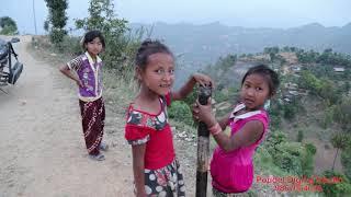 मनै छुने भिडियो    एक पोका काफल बेच्दाको खुसी    Nepali Small Girl`s video