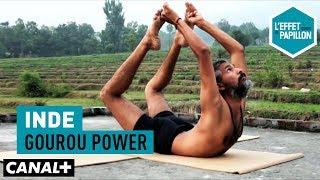 Inde : Gourou power - L'Effet Papillon - CANAL+