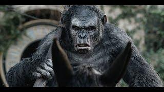 Трейлер Планета обезьян: Революция.