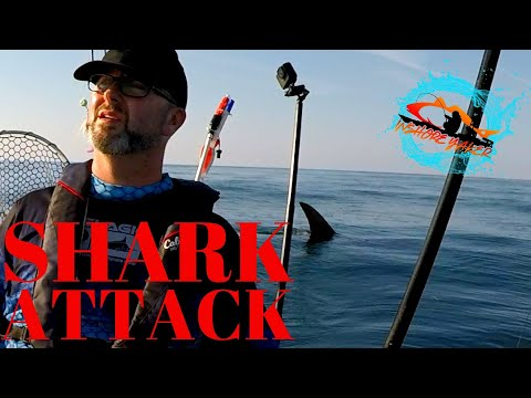 North Carolina Shark Attack While Kayak Fishing