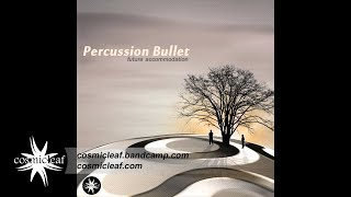 06 Percussion Bullet   In Progress // Cosmicleaf.com