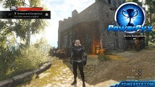 The Witcher 3 Wild Hunt - Griffin Witcher Gear Set Locations (Armed and Dangerous Trophy)