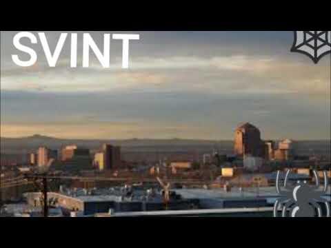 SVINT - One Take