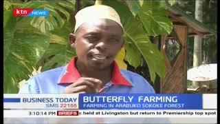 Butterfly farming in Arabuko Sokoke forest growing demand internationally