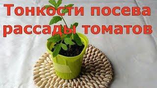 279. Тонкости посева рассады томатов