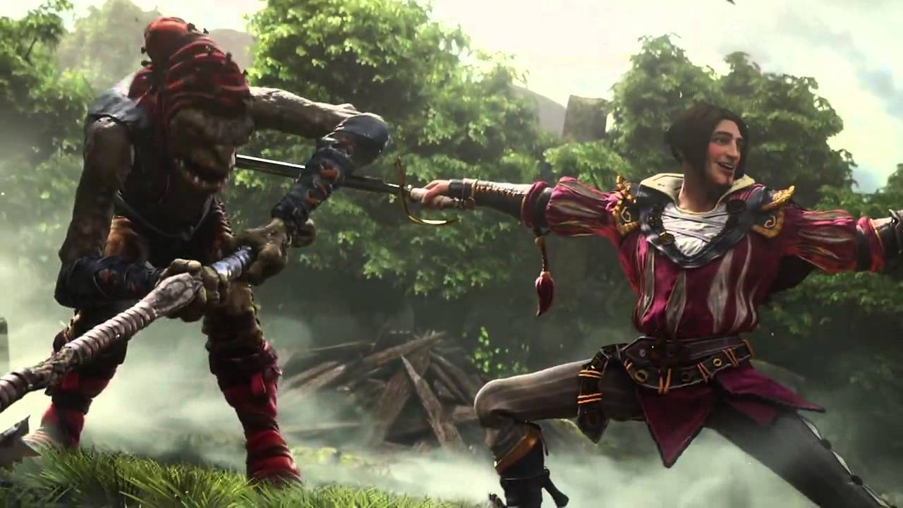 New Fable game tends to be an MMO game