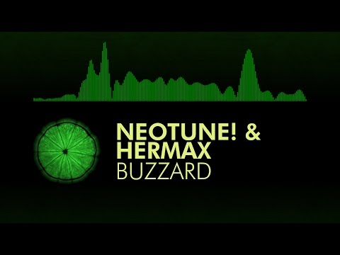 [Future House] NeoTune! & Hermax - Buzzard