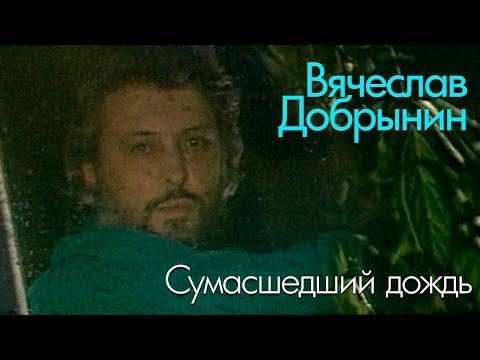 Вячеслав Добрынин - Сумасшедший дождь