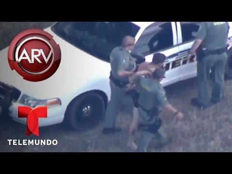 Intensa persecución a ladrón de un auto termina en el agua | Al Rojo Vivo | Telemundo