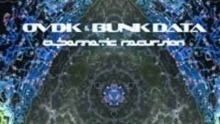 OVDK & Bunk Data -Night in Neptunium