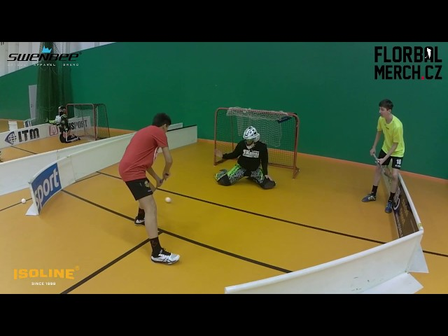 #MiStr31 - Goalie live #22