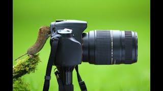 Снимаем видео на фотоаппарат Nikon D5100 kit 18-55(При съемке использовался стандартный kit 18-55, режим макросъемки плюс неопытный пользователь :), 2012-06-22T10:41:14.000Z)