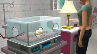 Incubator for Sims 2 PC version