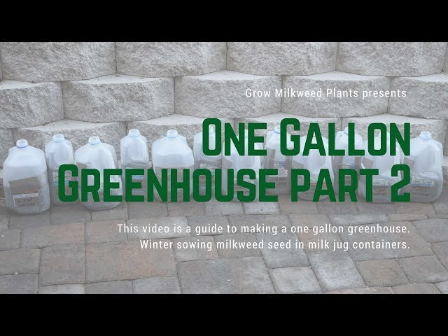 One Gallon Greenhouse part 2