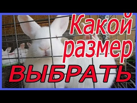 клетка для кролика из сетки / маточные/ откормочные/ для самцов.