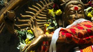 Shree Rudram in ghanam mode part 1 of 3