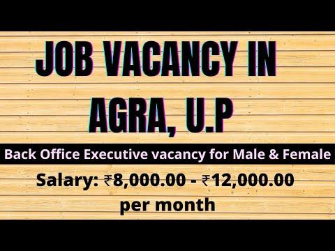 Back Office Executive Job in Agra | Earn 8000 to 12000 | Suman Dwivedi