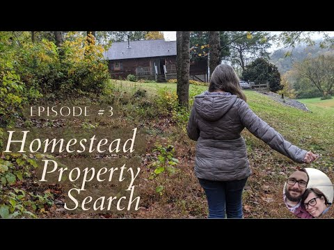 Homestead Property Search in Western North Carolina and Eastern Tennessee   Property Search Vlog #3