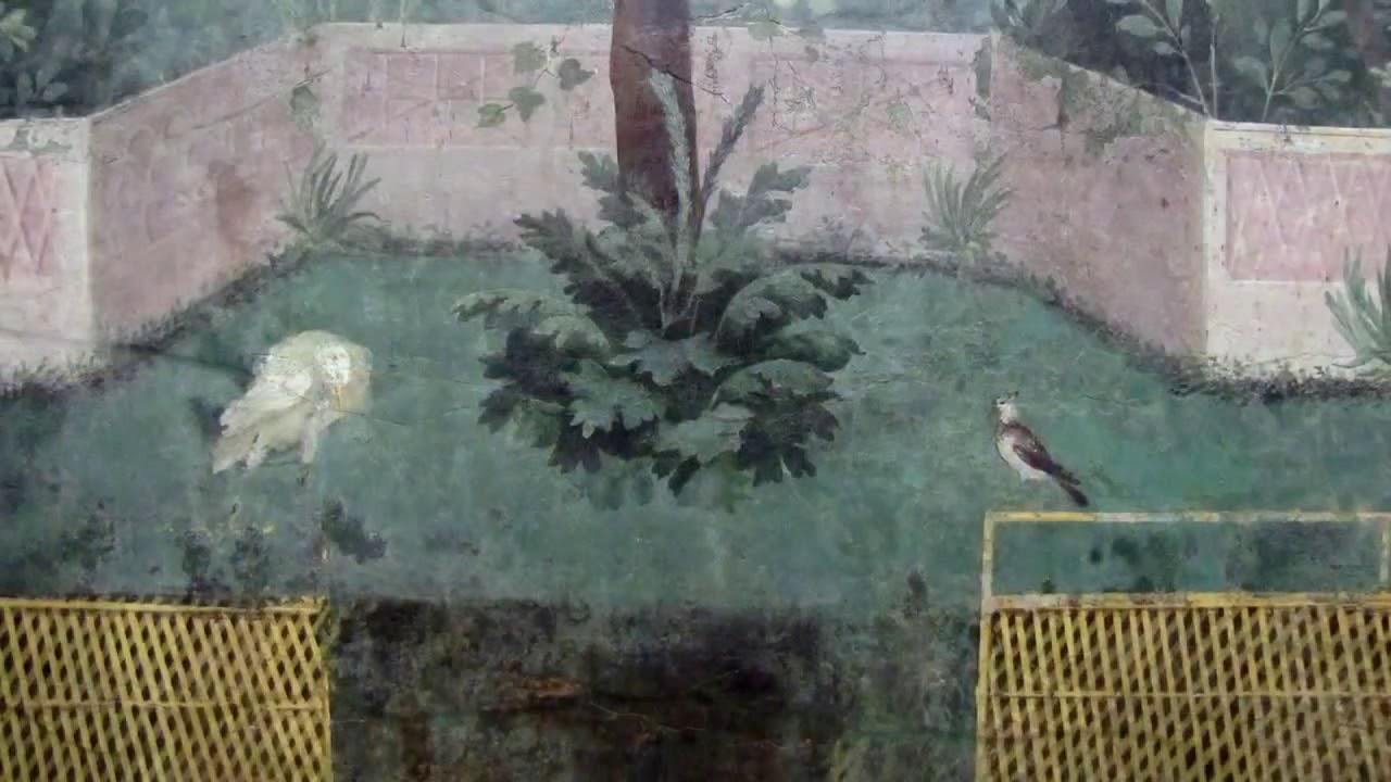 συζύγων πρώτη μεγάλες ιστορίες πουλί