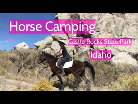 horse camping Archives - Ginny's Horse Product Review
