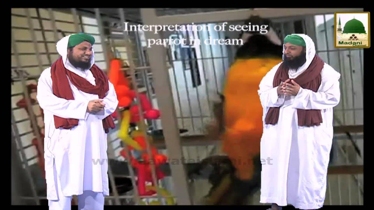 Khuabon Ki Tabeer - Interpretation Of Seeing Parrot In The Dream